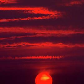 Fireball by Douglas Taylor