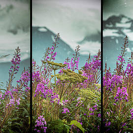 Fireweeds by Jim Cook