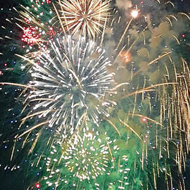 Fireworks to Celebrate by Tracy Ruckman