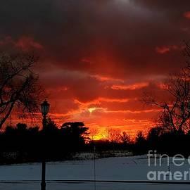 Firing Sunset by Sarah Szymanski