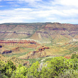 First Look, Salt River Canyon by Douglas Taylor