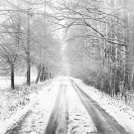 First Snow #6 BW by Slawek Aniol