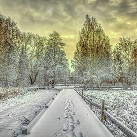 First Snow #j3 by Leif Sohlman