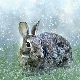 First Snow by Nansei Curtin