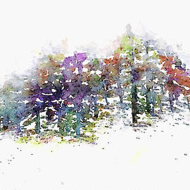 First Snow by Susan Maxwell Schmidt
