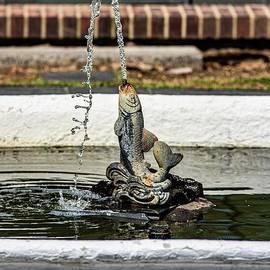 Fish Fountain  by Richard Thomas