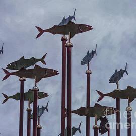 Fish street art in Southport England by Tony Hulme