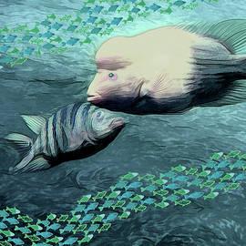 Fish Tank by Rosalie Scanlon