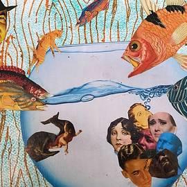 Fishbowl by Femina Photo Art By Maggie