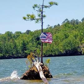 Flag Upon a Tiny Island by Georgia Threet