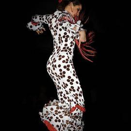 Flamenco dancer by Tony Camacho