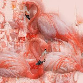 Flamingo Rest by Jack Zulli