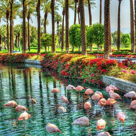 Flamingos and Palm Trees by David Zanzinger