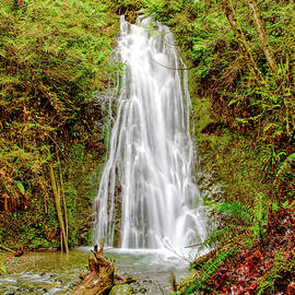 Flattery Creek Falls by Loyd Towe Photography