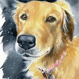 Fleece Dog Portrait by Dora Hathazi Mendes