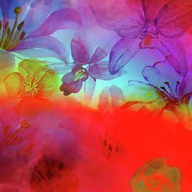 Floral Rainbow by Jirka Svetlik