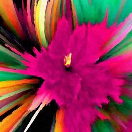 Floral SuperNova 2 by JD Van Rooyen