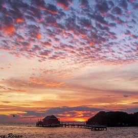 FLorida Sky Over Fish Shack by Karen Regan