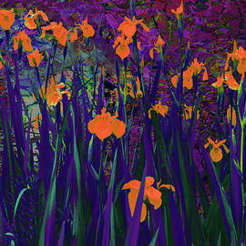 Flower abstract 2f by Jeff Burgess