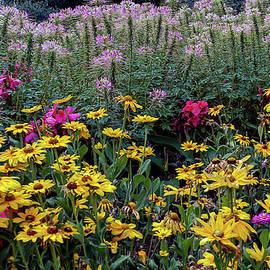 Flower Garden Delight by John Bartelt