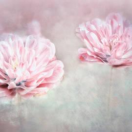 Flowers of Petals by Claudia Moeckel