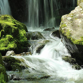 Flowing Mystical Energy in Shenandoah National Park by Maili Page