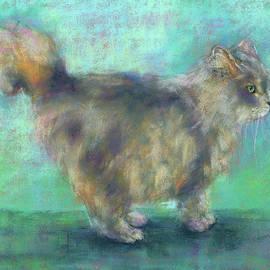 Fluffy longhair cat by Karen Kaspar