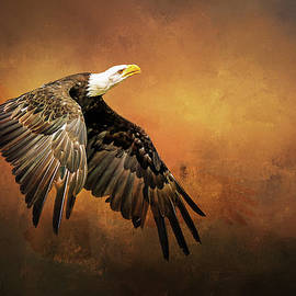 Fly like an eagle by Diana Van Tankeren