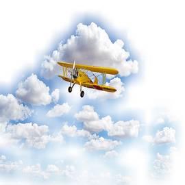 Flying  by Belinda Threeths