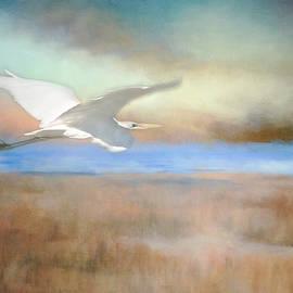 Flying Over the Marsh by Teresa Wilson