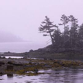Fog at Coastal Islet by Marty Saccone