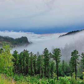 Fog In The Valley by Lorraine Baum