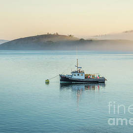 Fog Moving In by Alana Ranney
