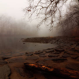 Fog on Neshaminy Creek by Denise Harty