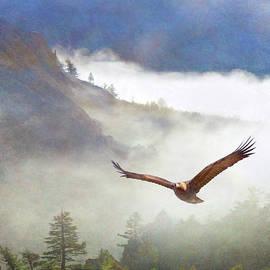 Fog On The Gibbon River, Golden Eagle by R christopher Vest