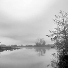 Fog On The River - Tillamook - Oregon by Beautiful Oregon