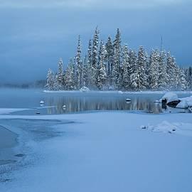 Fog, snow, and ice by Lynn Hopwood
