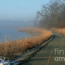 Foggy Central Park, Carmel, Indiana by Steve Gass