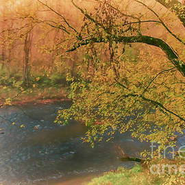Foggy Dawn on the Neshannock River by Janice Pariza