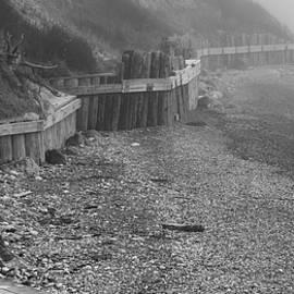 Foggy Day at Partridge Point by Bob VonDrachek