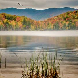 Foggy Morning by Cathy Kovarik
