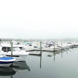 Foggy Morning on Bass River Marina by Lyuba Filatova