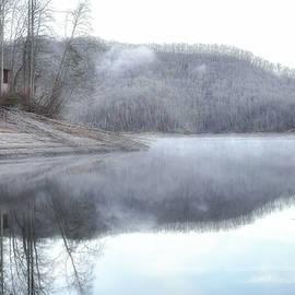 Foggy morning on the Lake by Kedar Munshi