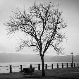 Foggy Morning Taunton River VI BW by David Gordon
