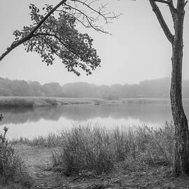 Foggy Morning Taunton River VII BW by David Gordon