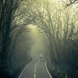 Foggy Road Ahead by Chris Lord