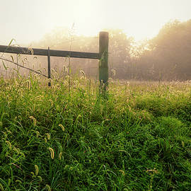 Foggy sunrise in Northeast Tennessee farm country by Shelia Hunt