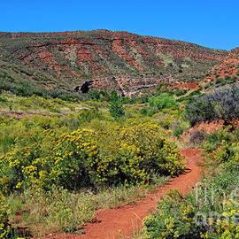 Folded Rock Trail by Jon Burch Photography