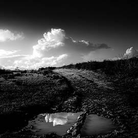 Follow The Destiny  by Paulo Viana