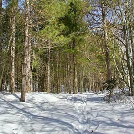 Follow the Snowy Path by Ann Brown